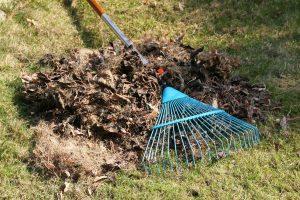 sse spring cleanup2