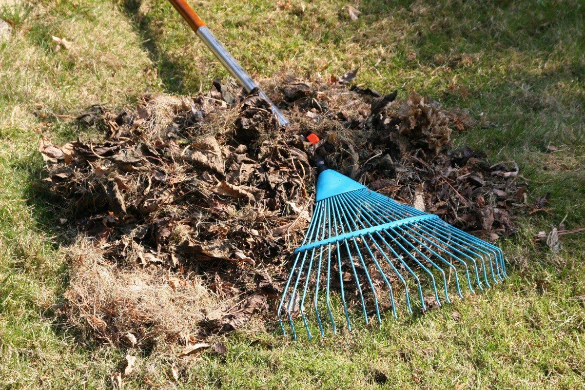 spring-cleanup   sse landscape contractors